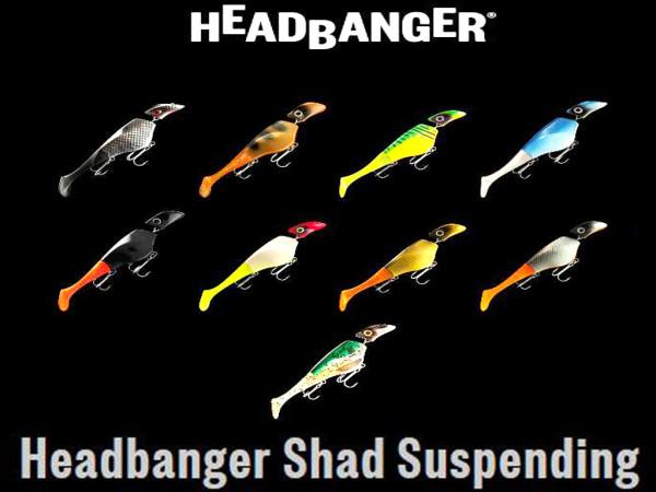 Headbanger Shad 16 cm suspending